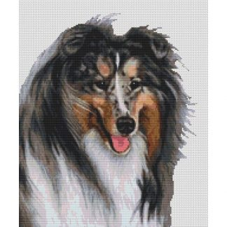 Collie Cross Stitch Pattern - Blue Merle