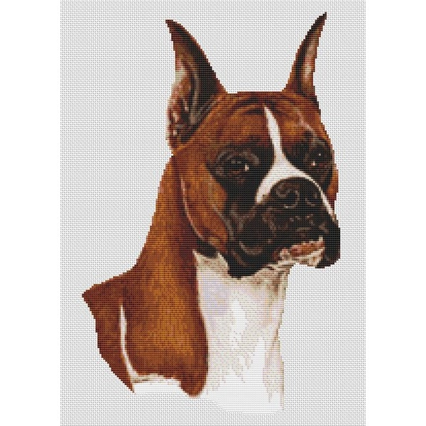 Boxer Cross Stitch Pattern
