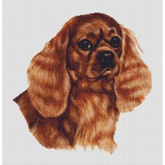 Ruby Cavalier Spaniel Cross Stitch Pattern