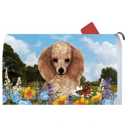 Apricot Poodle Mail Box Cover