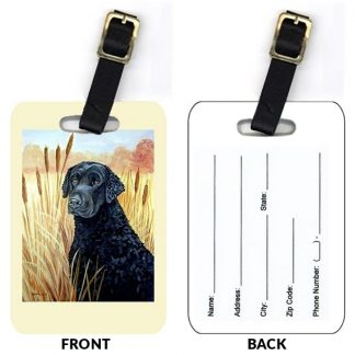 Curly Coated Retriever Luggage Tags (Set of 2)