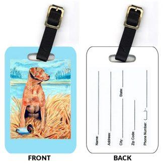 Chesapeake Bay Retriever Luggage Tags (Set of 2)
