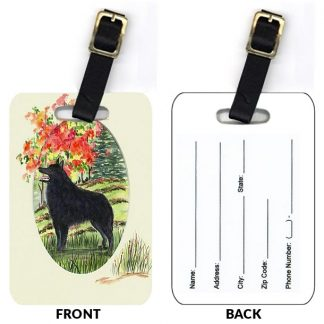 Schipperke Luggage Tags III (Set of 2)