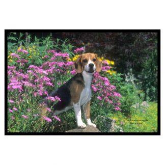 Beagle Mat