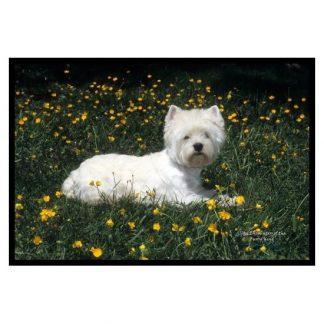 West Highland Terrier Mat